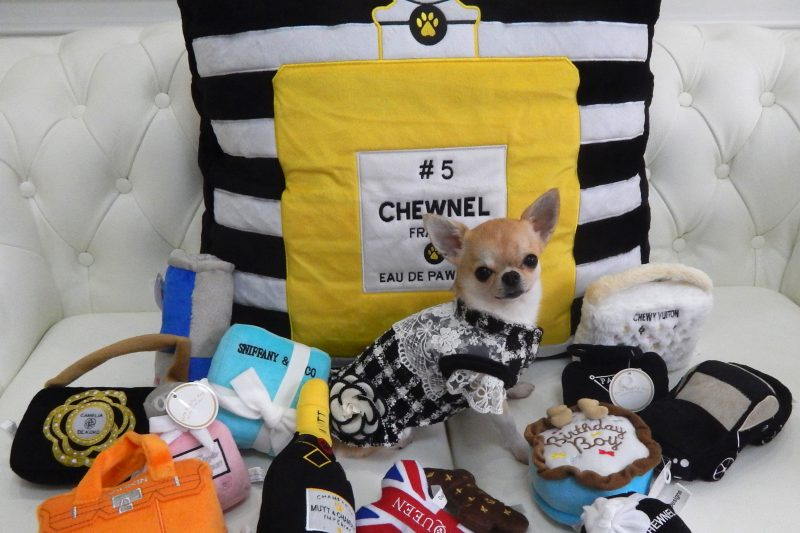 【Decoco】Dog Diggin Designs Bed/Toyのアイキャッチ