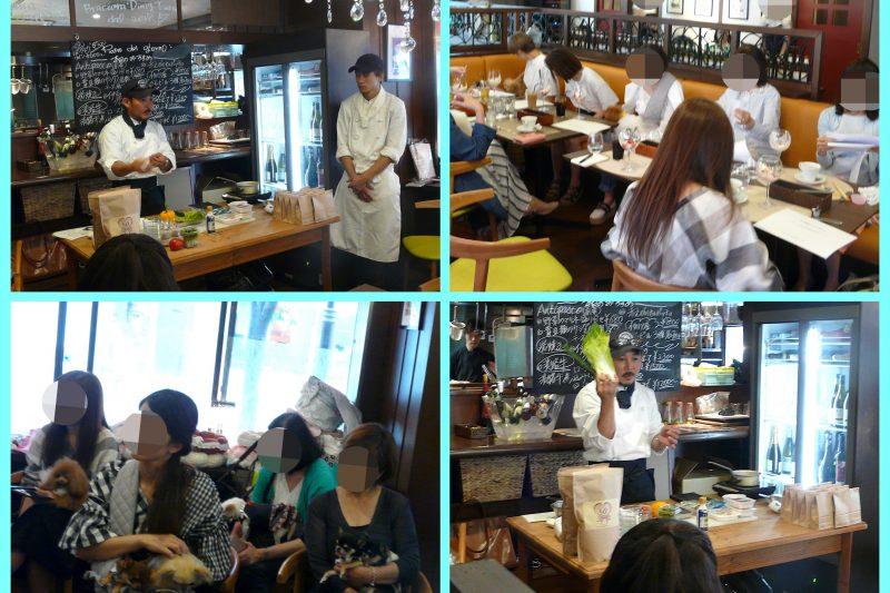 【Decoco】わんちゃん ご飯手作り 実演 食のお勉強会ご参加有難うございましたのアイキャッチ